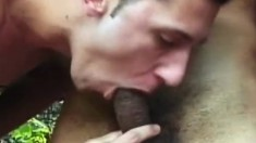Dirty studs enjoy sliding their tongues deep up each other's assholes